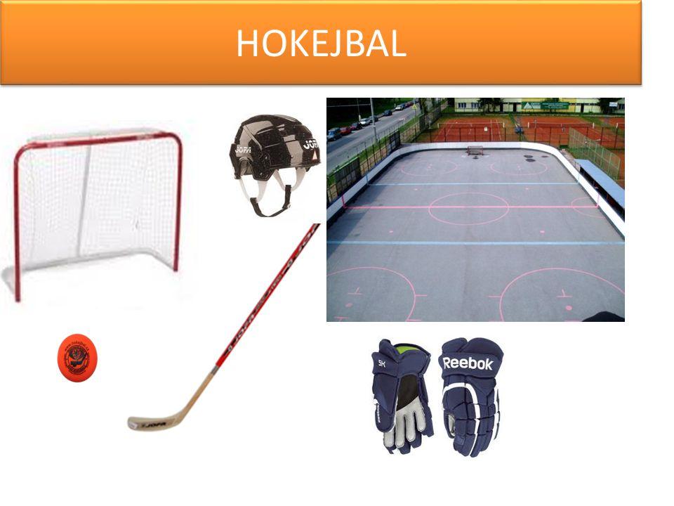 -Hokejbal je sport, který není moc známý, ale na Kladně je velice oblíbený.