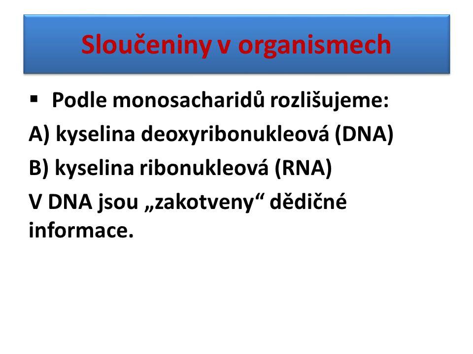 """Sloučeniny v organismech  Podle monosacharidů rozlišujeme: A) kyselina deoxyribonukleová (DNA) B) kyselina ribonukleová (RNA) V DNA jsou """"zakotveny"""""""