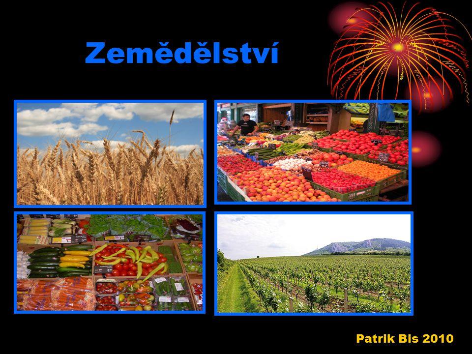Zemědělství Patrik Bis 2010