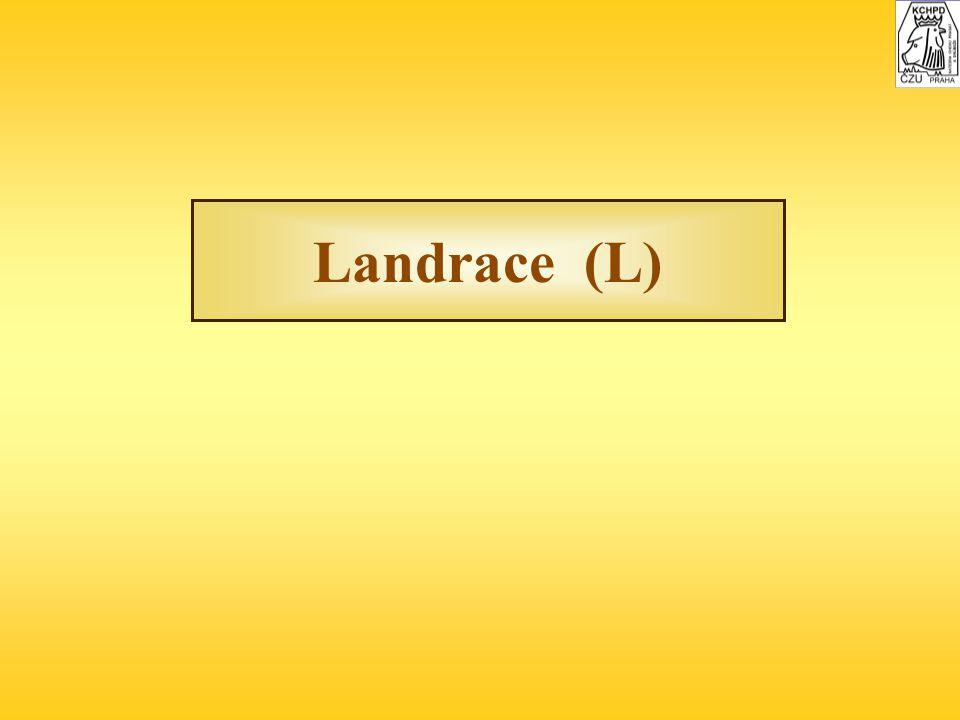 Landrace (L)
