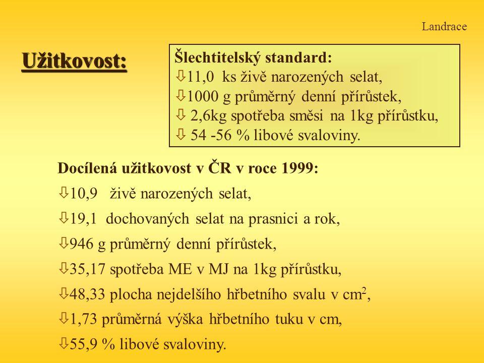 LandraceUžitkovost: Šlechtitelský standard: ò 11,0 ks živě narozených selat, ò 1000 g průměrný denní přírůstek, ò 2,6kg spotřeba směsi na 1kg přírůstku, ò 54 -56 % libové svaloviny.