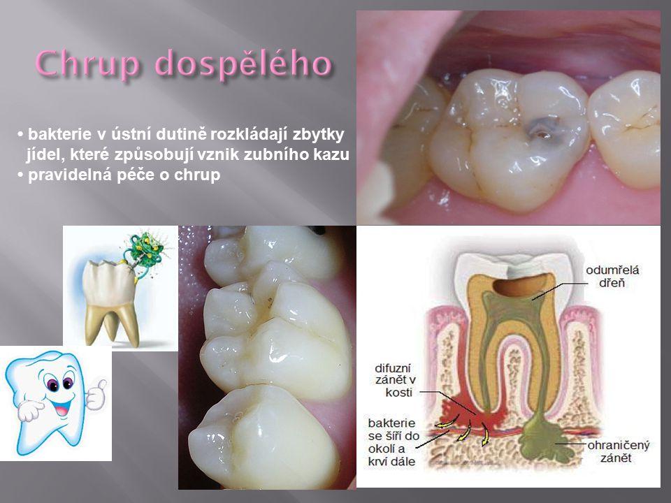 bakterie v ústní dutině rozkládají zbytky jídel, které způsobují vznik zubního kazu pravidelná péče o chrup