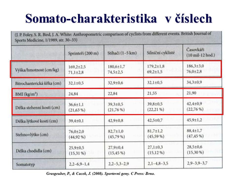 Antropometrická charakteristika Grasgeuber, P., & Cacek, J. (2008). Sportovní geny. C Press: Brno.