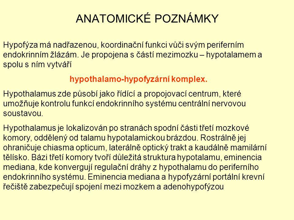 ANATOMICKÉ POZNÁMKY Hypofýza má nadřazenou, koordinační funkci vůči svým periferním endokrinním žlázám. Je propojena s částí mezimozku – hypotalamem a