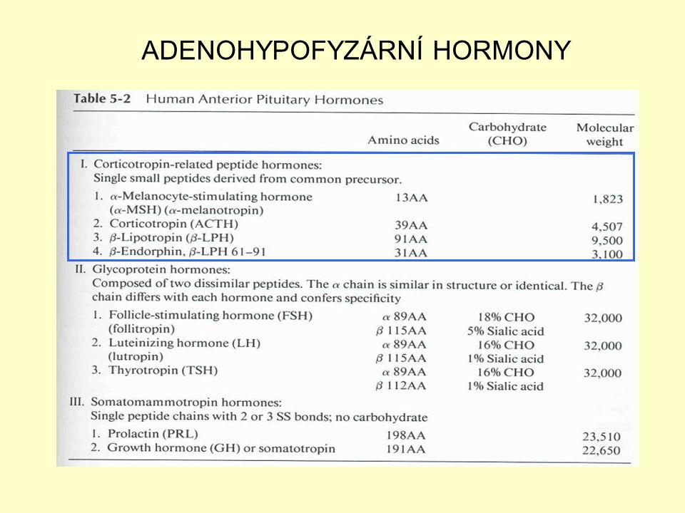 ADENOHYPOFYZÁRNÍ HORMONY