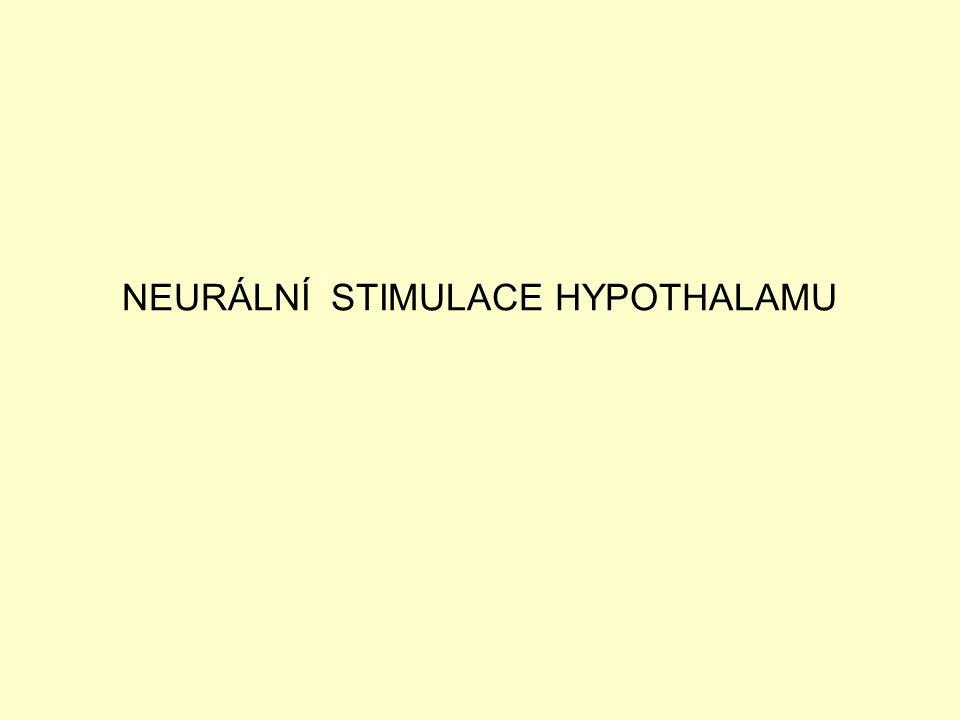 NEURÁLNÍ STIMULACE HYPOTHALAMU