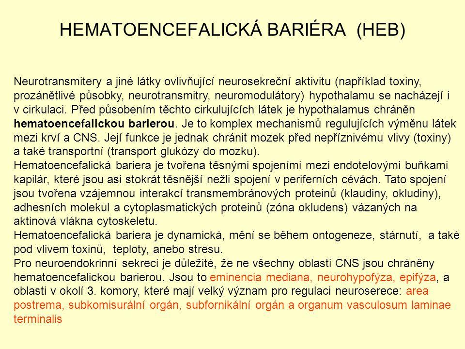 HEMATOENCEFALICKÁ BARIÉRA (HEB) Neurotransmitery a jiné látky ovlivňující neurosekreční aktivitu (například toxiny, prozánětlivé působky, neurotransmi