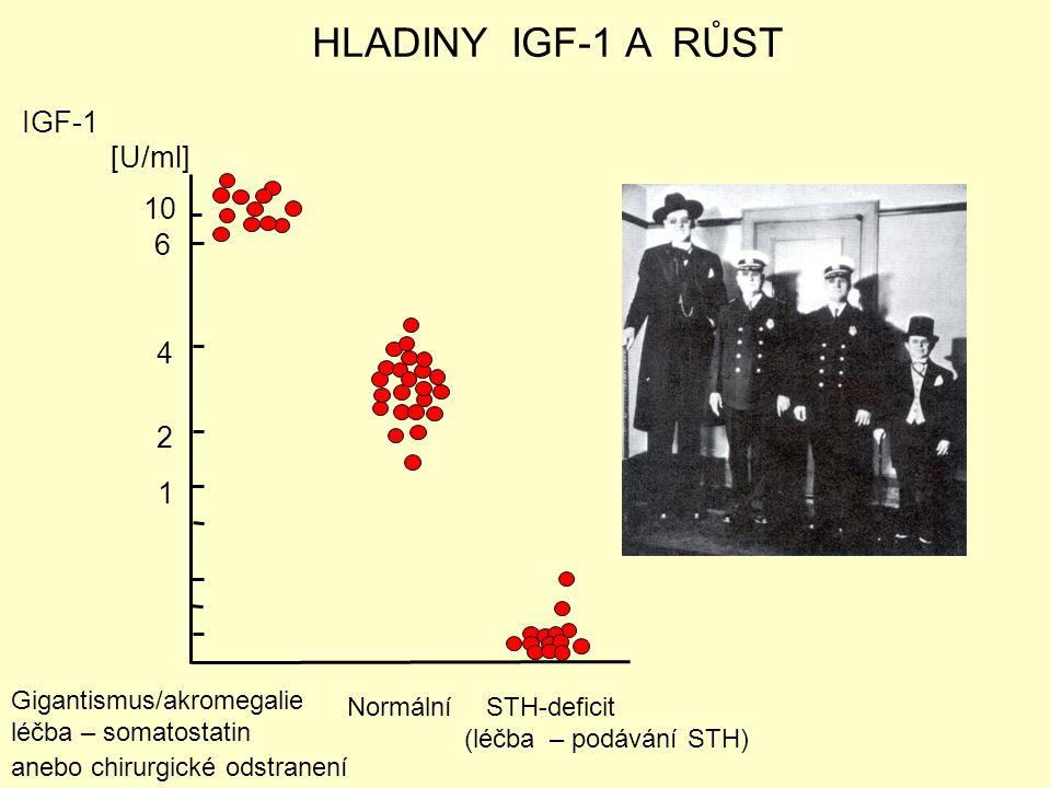 10 6 4 2 1 IGF-1 [U/ml] HLADINY IGF-1 A RŮST Gigantismus/akromegalie léčba – somatostatin anebo chirurgické odstranení Normální STH-deficit (léčba – p