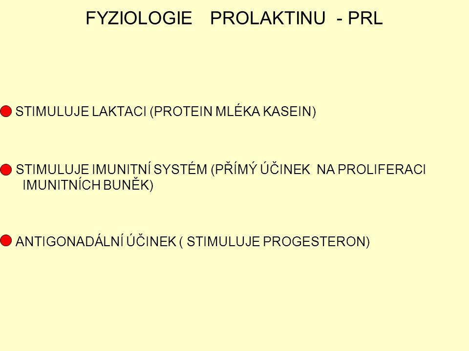 FYZIOLOGIE PROLAKTINU - PRL STIMULUJE LAKTACI (PROTEIN MLÉKA KASEIN) STIMULUJE IMUNITNÍ SYSTÉM (PŘÍMÝ ÚČINEK NA PROLIFERACI IMUNITNÍCH BUNĚK) ANTIGONA