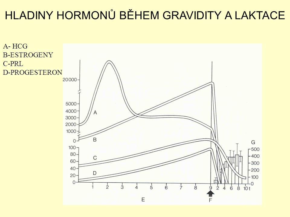 HLADINY HORMONŮ BĚHEM GRAVIDITY A LAKTACE A- HCG B-ESTROGENY C-PRL D-PROGESTERON
