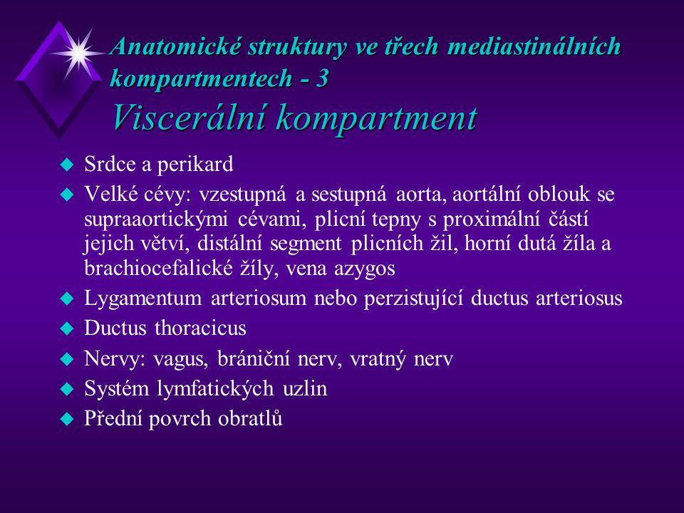 Anatomické struktury ve třech mediastinálních kompartmentech - 3 Viscerální kompartment u Srdce a perikard u Velké cévy: vzestupná a sestupná aorta, aortální oblouk se supraaortickými cévami, plicní tepny s proximální částí jejich větví, distální segment plicních žil, horní dutá žíla a brachiocefalické žíly, vena azygos u Lygamentum arteriosum nebo perzistující ductus arteriosus u Ductus thoracicus u Nervy: vagus, brániční nerv, vratný nerv u Systém lymfatických uzlin u Přední povrch obratlů