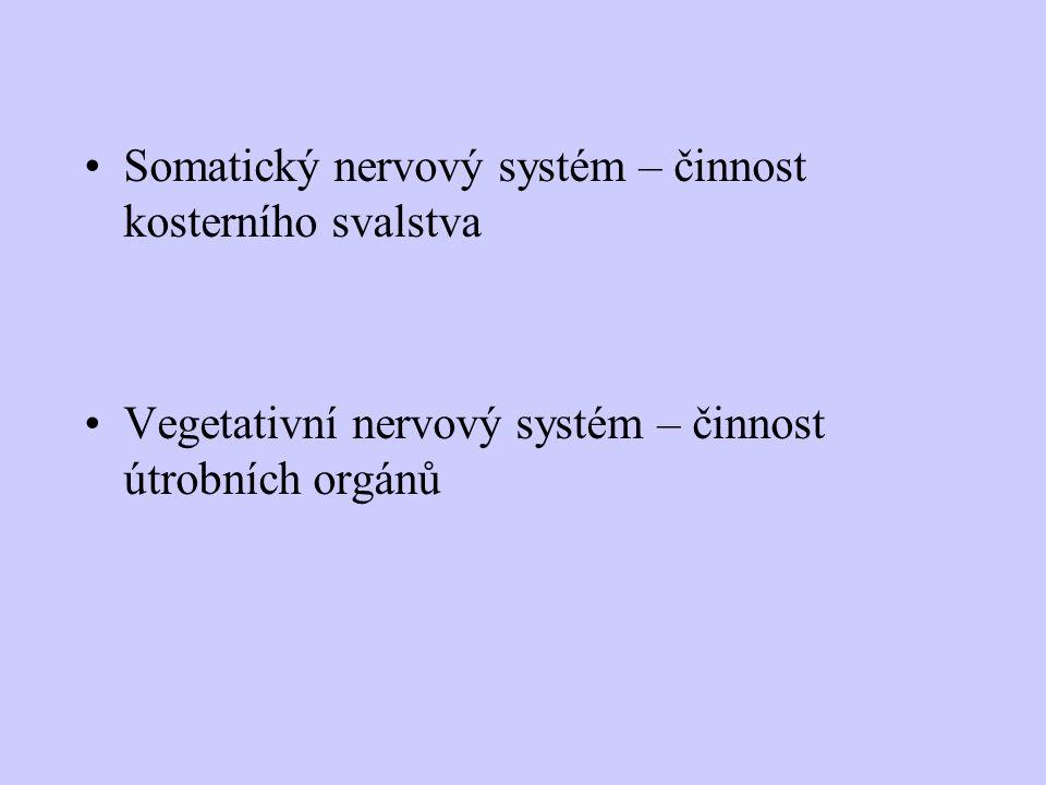 Podněty- receptory (čidla) - vzruchy (impulzy)- dostředivý nerv (aferentní)- CNS- odstředivý nerv (eferentní)- výkonný orgán (efektor)