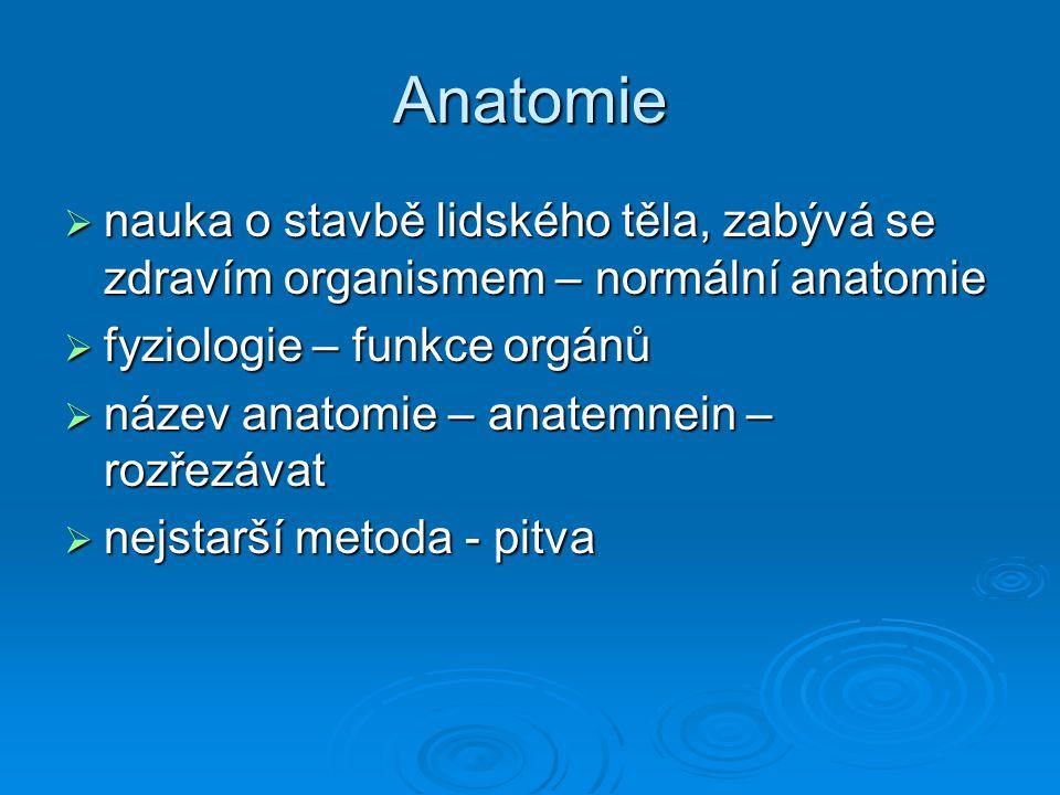 Anatomie  nauka o stavbě lidského těla, zabývá se zdravím organismem – normální anatomie  fyziologie – funkce orgánů  název anatomie – anatemnein –