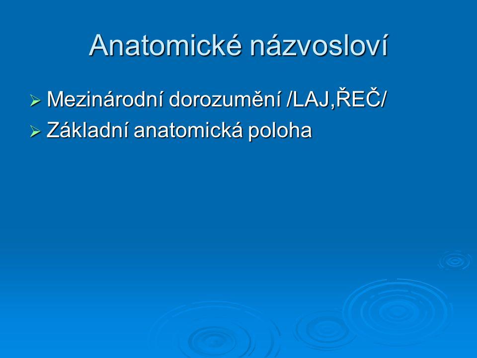 Anatomické názvosloví  Mezinárodní dorozumění /LAJ,ŘEČ/  Základní anatomická poloha
