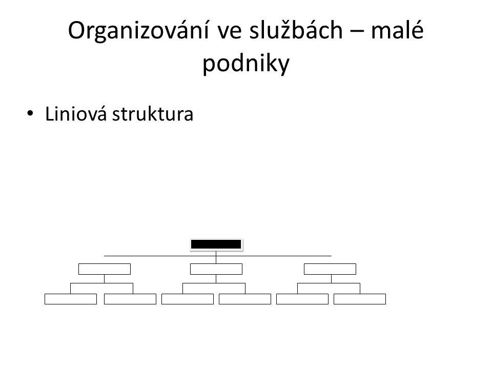 Organizování ve službách – malé podniky Liniová struktura
