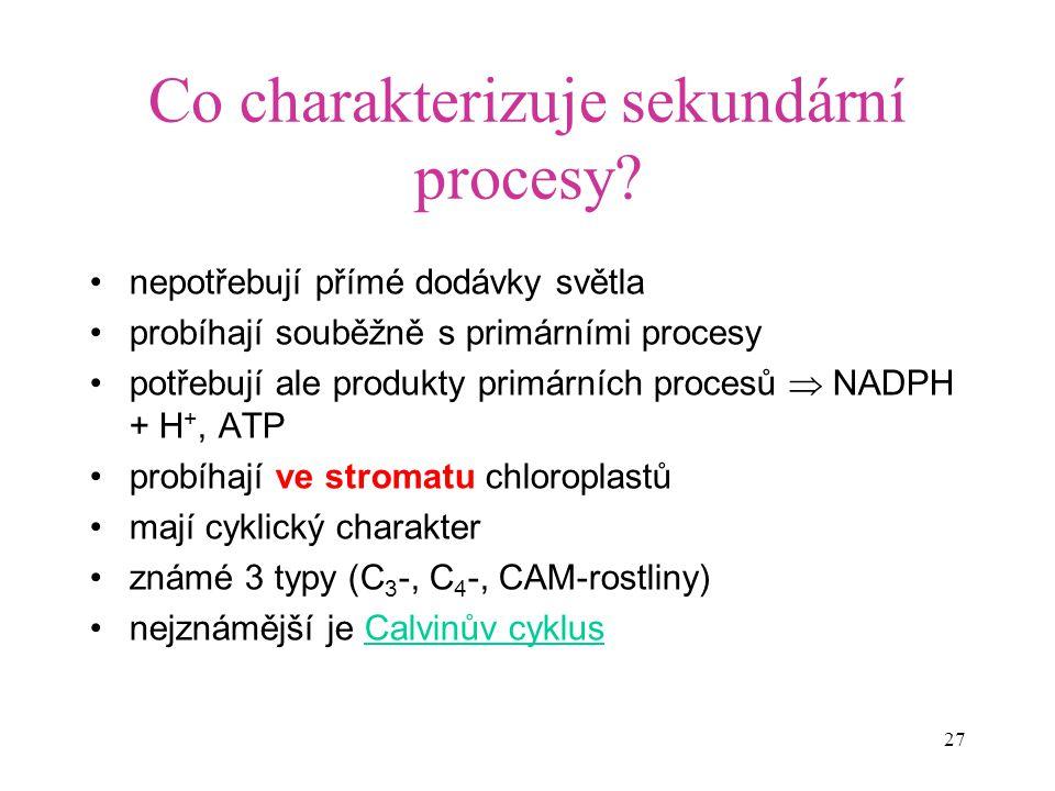 27 Co charakterizuje sekundární procesy? nepotřebují přímé dodávky světla probíhají souběžně s primárními procesy potřebují ale produkty primárních pr