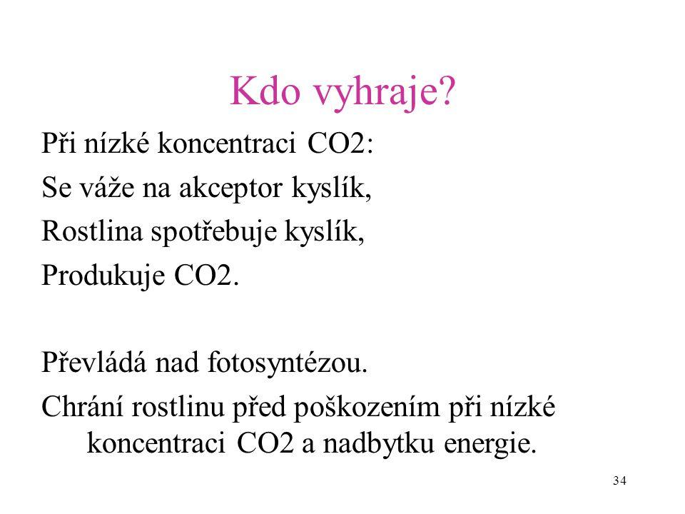 34 Kdo vyhraje? Při nízké koncentraci CO2: Se váže na akceptor kyslík, Rostlina spotřebuje kyslík, Produkuje CO2. Převládá nad fotosyntézou. Chrání ro