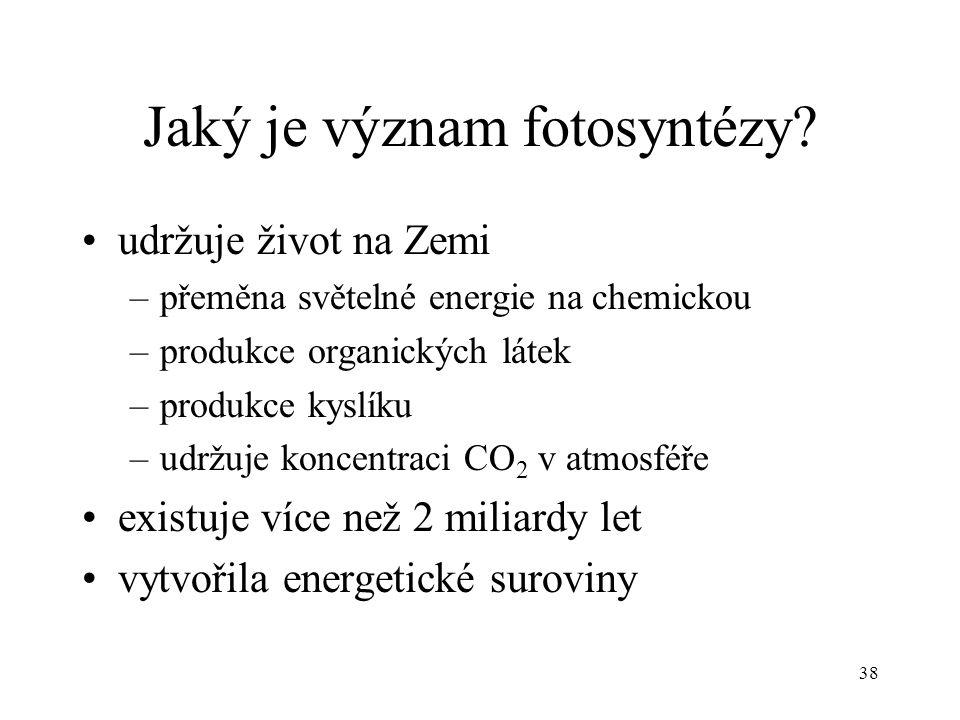 38 Jaký je význam fotosyntézy? udržuje život na Zemi –přeměna světelné energie na chemickou –produkce organických látek –produkce kyslíku –udržuje kon