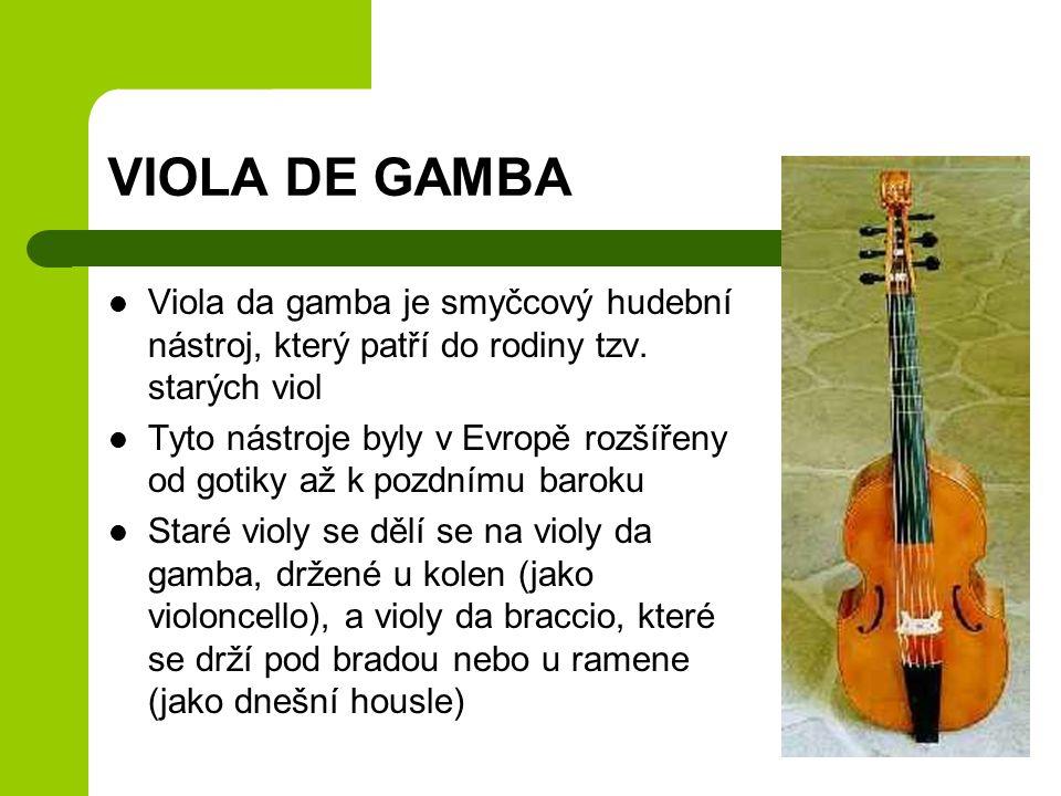 VIOLA DE GAMBA Viola da gamba je smyčcový hudební nástroj, který patří do rodiny tzv. starých viol Tyto nástroje byly v Evropě rozšířeny od gotiky až