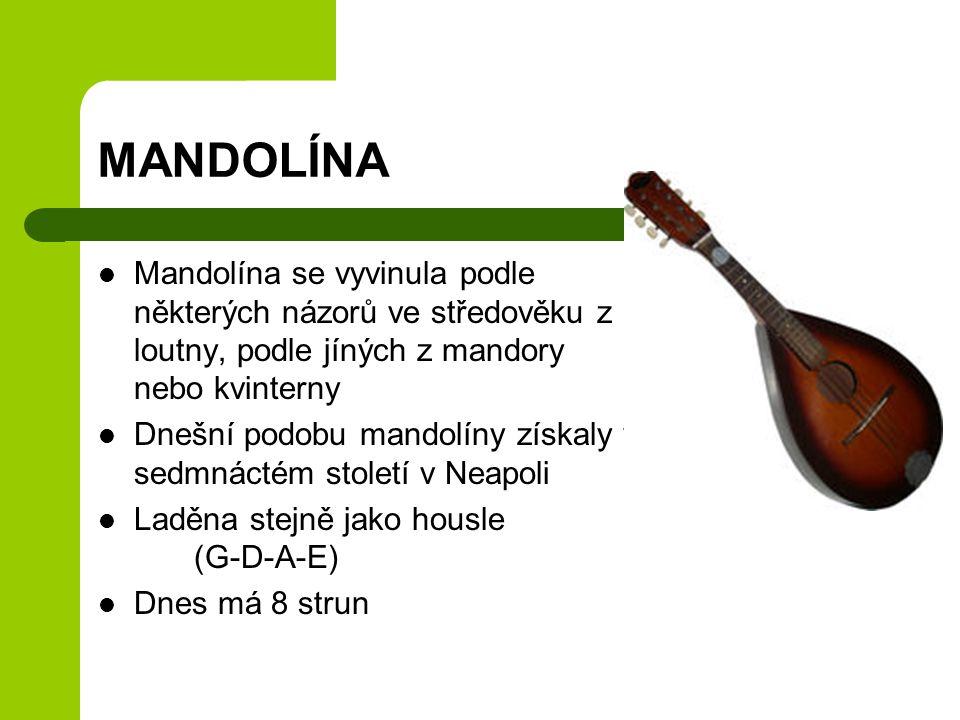 MANDOLÍNA Mandolína se vyvinula podle některých názorů ve středověku z loutny, podle jíných z mandory nebo kvinterny Dnešní podobu mandolíny získaly v sedmnáctém století v Neapoli Laděna stejně jako housle (G-D-A-E) Dnes má 8 strun