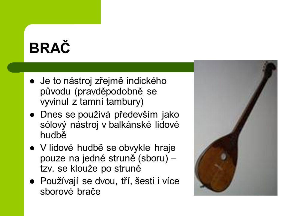BRAČ Je to nástroj zřejmě indického původu (pravděpodobně se vyvinul z tamní tambury) Dnes se používá především jako sólový nástroj v balkánské lidové hudbě V lidové hudbě se obvykle hraje pouze na jedné struně (sboru) – tzv.