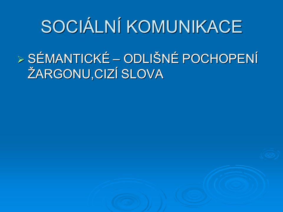 SOCIÁLNÍ KOMUNIKACE  SÉMANTICKÉ – ODLIŠNÉ POCHOPENÍ ŽARGONU,CIZÍ SLOVA