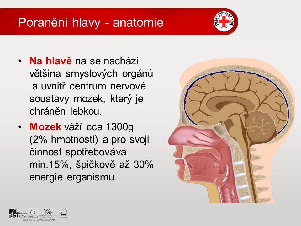 Poranění hlavy - anatomie Na hlavě na se nachází většina smyslových orgánů a uvnitř centrum nervové soustavy mozek, který je chráněn lebkou. Mozek váž