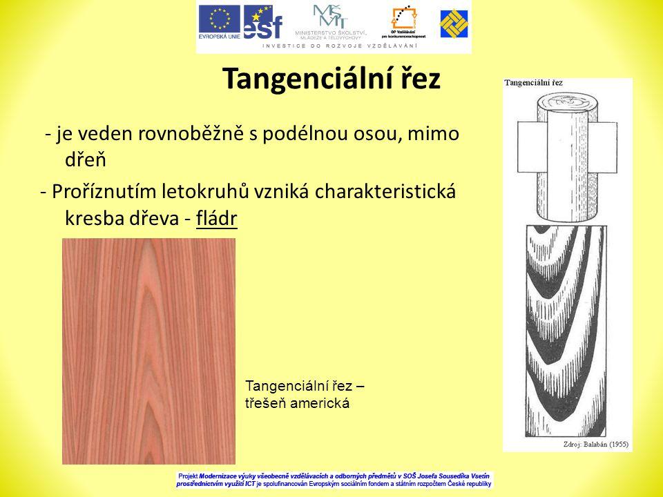 Tangenciální řez - je veden rovnoběžně s podélnou osou, mimo dřeň - Proříznutím letokruhů vzniká charakteristická kresba dřeva - fládr Tangenciální řez – třešeň americká