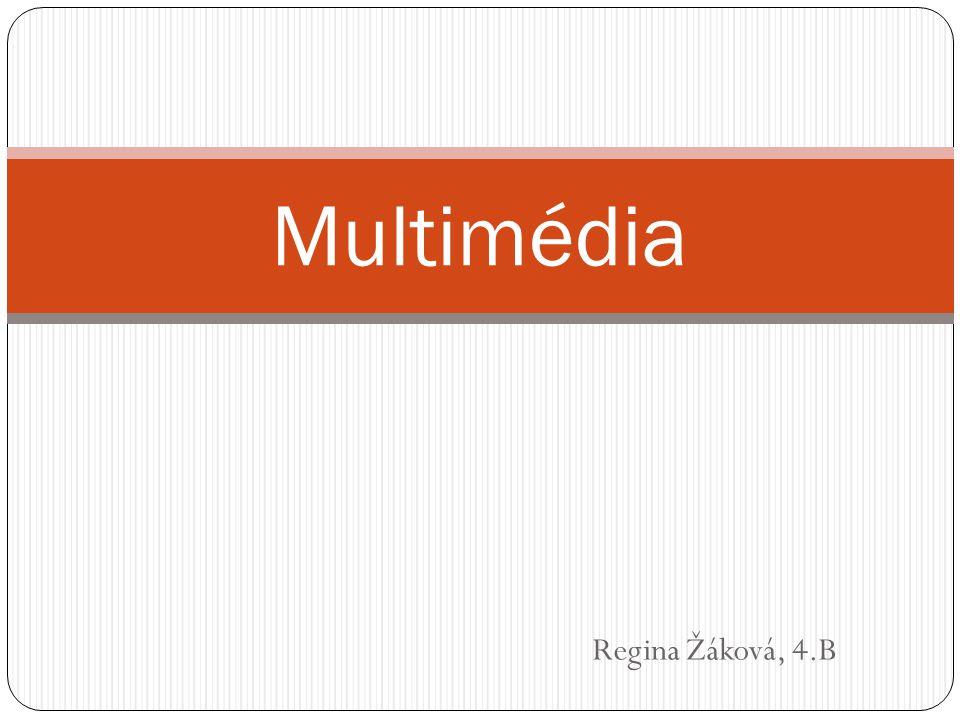 Regina Žáková, 4.B Multimédia