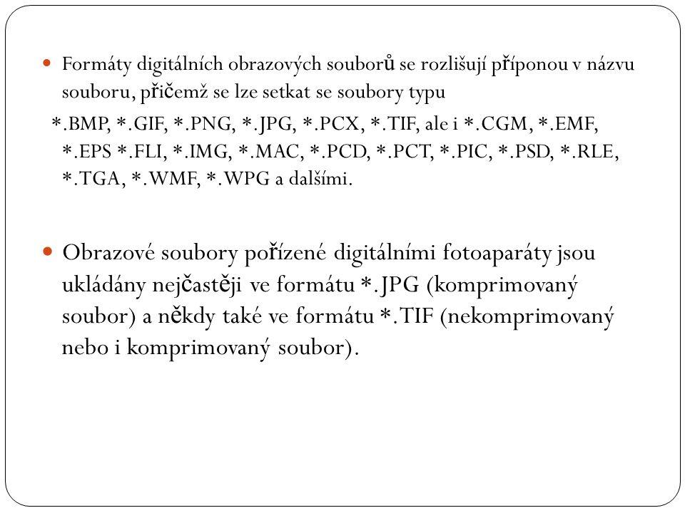 Formáty digitálních obrazových soubor ů se rozlišují p ř íponou v názvu souboru, p ř i č emž se lze setkat se soubory typu *.BMP, *.GIF, *.PNG, *.JPG,