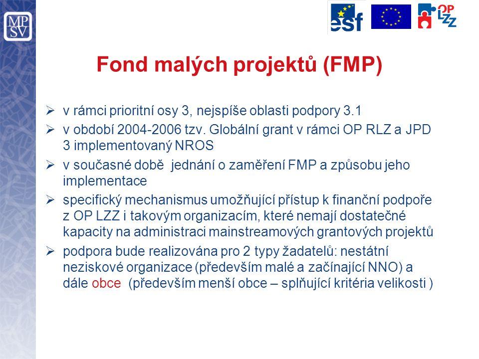 Fond malých projektů (FMP)  v rámci prioritní osy 3, nejspíše oblasti podpory 3.1  v období 2004-2006 tzv. Globální grant v rámci OP RLZ a JPD 3 imp