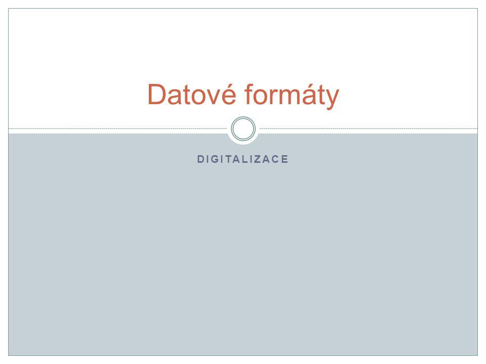 DIGITALIZACE Datové formáty