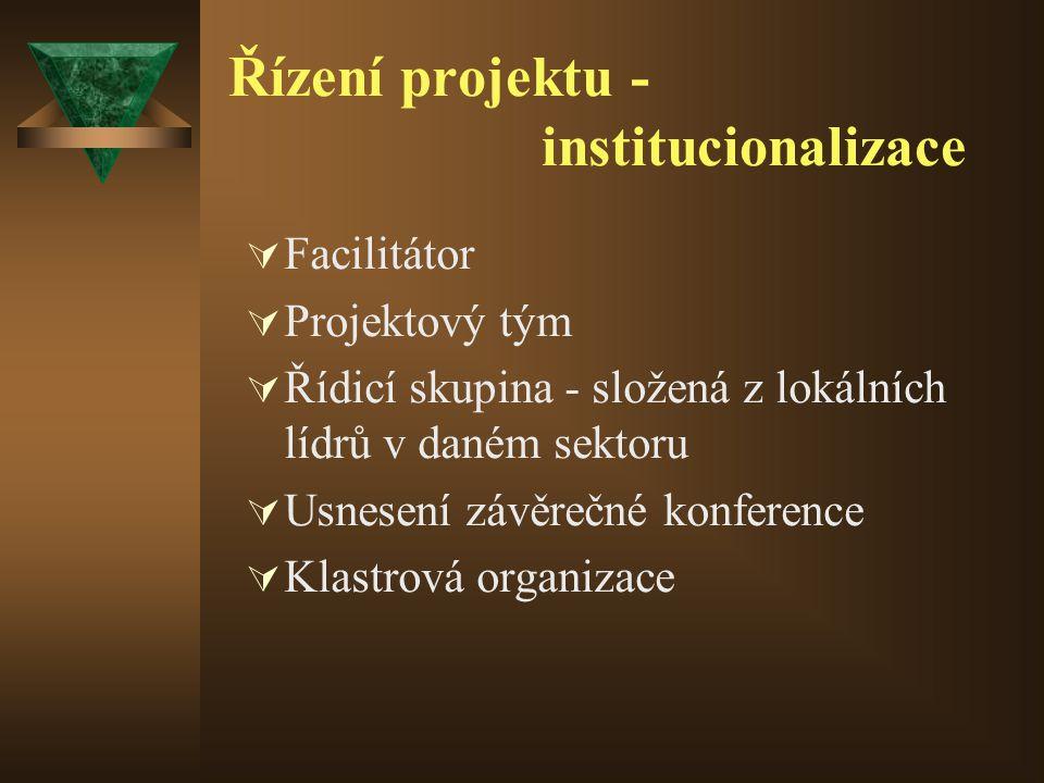 Řízení projektu - institucionalizace  Facilitátor  Projektový tým  Řídicí skupina - složená z lokálních lídrů v daném sektoru  Usnesení závěrečné konference  Klastrová organizace