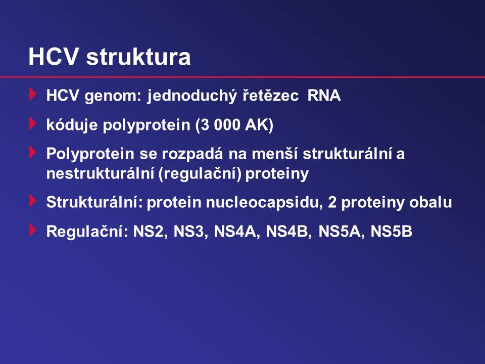 HCV struktura  HCV genom: jednoduchý řetězec RNA  kóduje polyprotein (3 000 AK)  Polyprotein se rozpadá na menší strukturální a nestrukturální (regulační) proteiny  Strukturální: protein nucleocapsidu, 2 proteiny obalu  Regulační: NS2, NS3, NS4A, NS4B, NS5A, NS5B