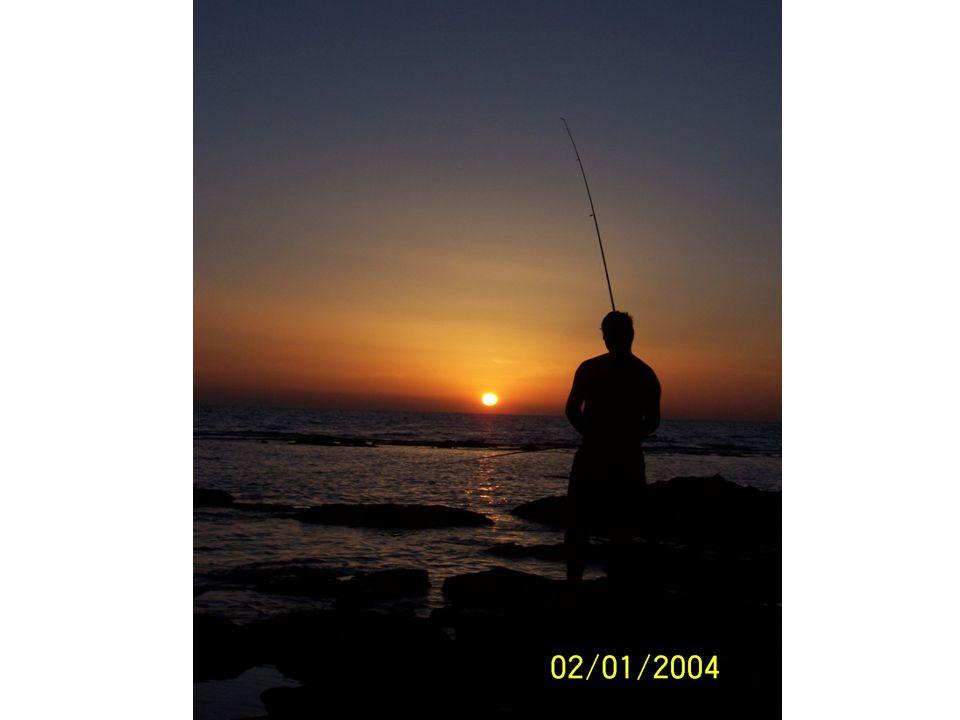 Jachting, surf, kite