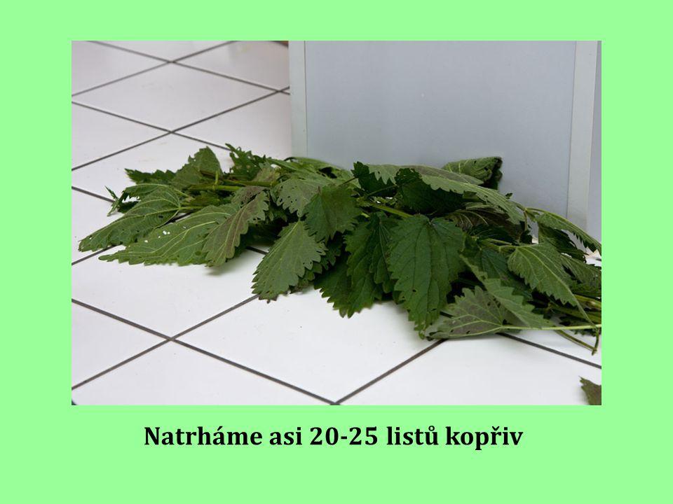 Natrháme asi 20-25 listů kopřiv