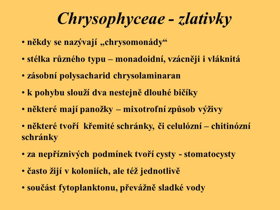 """někdy se nazývají """"chrysomonády"""" stélka různého typu – monadoidní, vzácněji i vláknitá zásobní polysacharid chrysolaminaran k pohybu slouží dva nestej"""