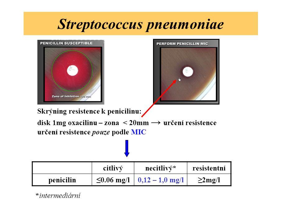 Streptococcus pneumoniae citlivýnecitlivý*resistentní penicilin≤0.06 mg/l0,12 – 1,0 mg/l≥2mg/l *intermediární Skrýning resistence k penicilinu: disk 1