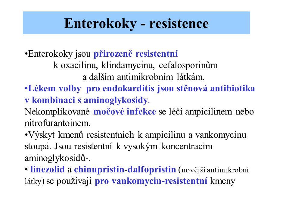 Enterokoky jsou přirozeně resistentní k oxacilinu, klindamycinu, cefalosporinům a dalším antimikrobním látkám. Lékem volby pro endokarditis jsou stěno