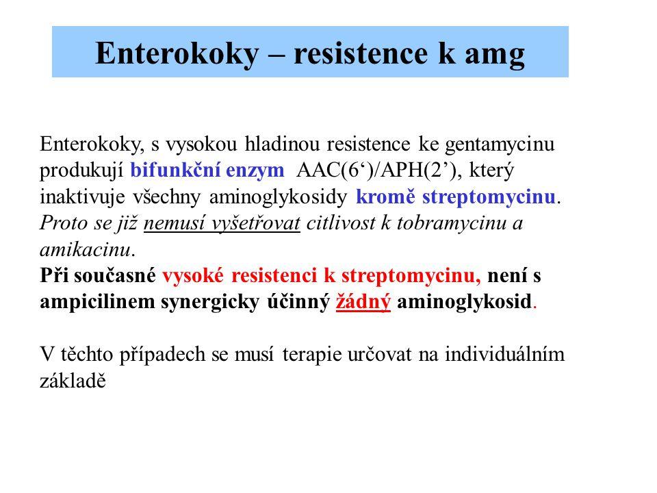 Enterokoky, s vysokou hladinou resistence ke gentamycinu produkují bifunkční enzym AAC(6')/APH(2'), který inaktivuje všechny aminoglykosidy kromě stre