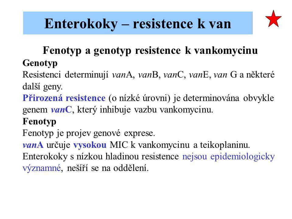 Fenotyp a genotyp resistence k vankomycinu Genotyp Resistenci determinují vanA, vanB, vanC, vanE, van G a některé další geny. Přirozená resistence (o