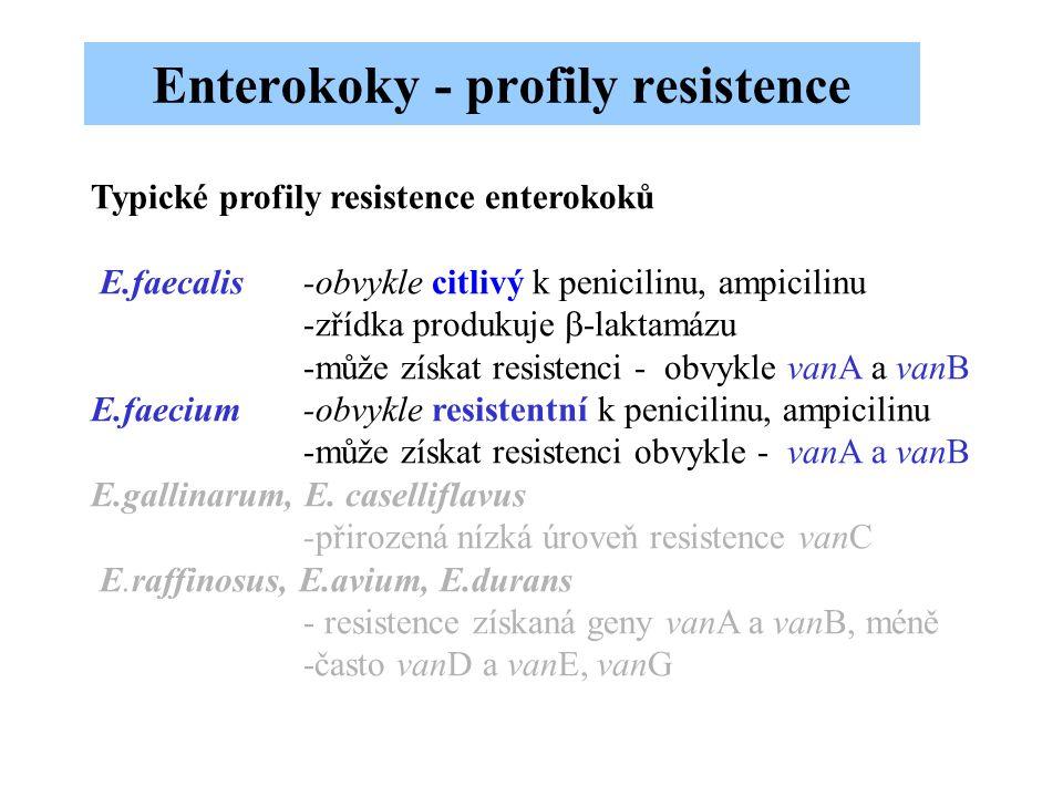 Typické profily resistence enterokoků E.faecalis-obvykle citlivý k penicilinu, ampicilinu -zřídka produkuje  -laktamázu -může získat resistenci - obv