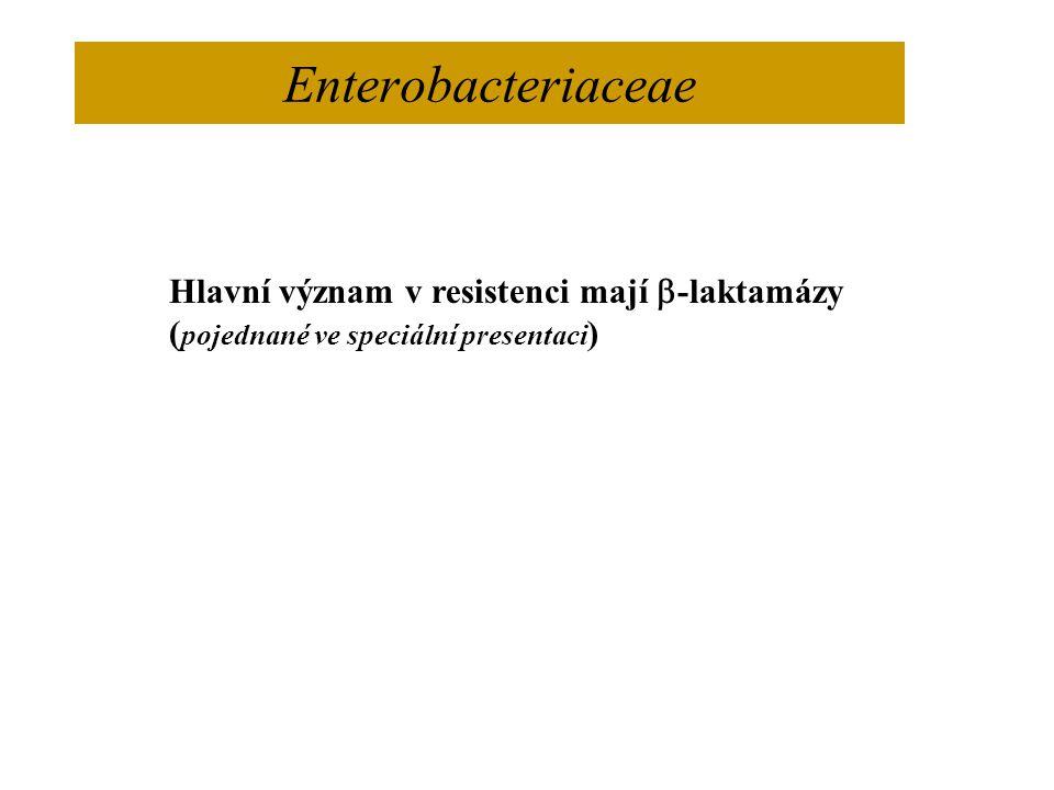 Enterobacteriaceae Hlavní význam v resistenci mají  -laktamázy ( pojednané ve speciální presentaci )