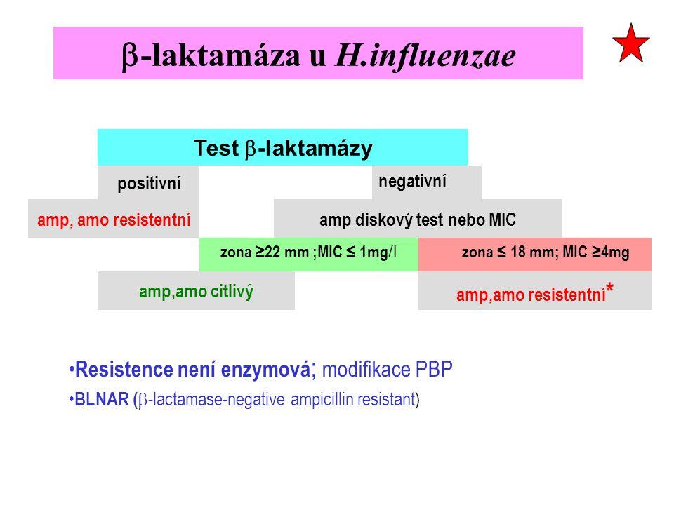  -laktamáza u H.influenzae Test  -laktamázy positivní negativní amp, amo resistentníamp diskový test nebo MIC zona ≥22 mm ;MIC ≤ 1mg /l zona ≤ 18 mm