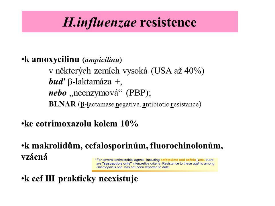 """H.influenzae resistence k amoxycilinu (ampicilinu) v některých zemích vysoká (USA až 40%) buď  -laktamáza +, nebo """"neenzymová"""" (PBP); BLNAR (  -lact"""