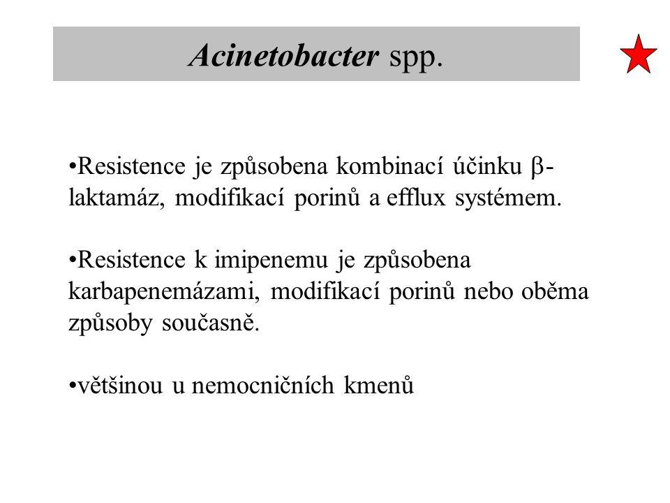 Resistence je způsobena kombinací účinku  - laktamáz, modifikací porinů a efflux systémem. Resistence k imipenemu je způsobena karbapenemázami, modif