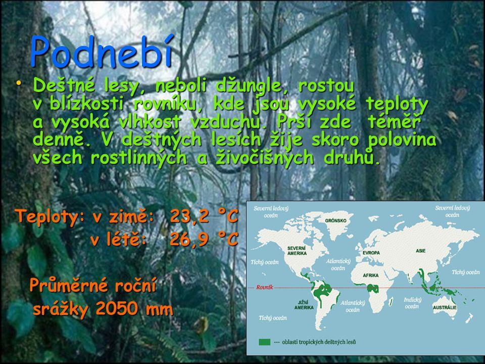 Vliv člověka na přírodu Člověk ovlivňuje přírodu v tropech hlavně těžbou (Těžba nerostů a uhlí) Člověk ovlivňuje přírodu v tropech hlavně těžbou (Těžba nerostů a uhlí) Člověk také škodí přírodě odlesňováním.