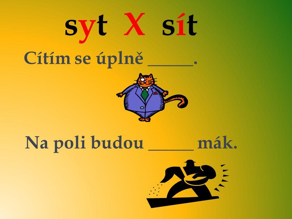 syt X sít Cítím se úplně _____. Na poli budou _____ mák. sytsyt sítsít