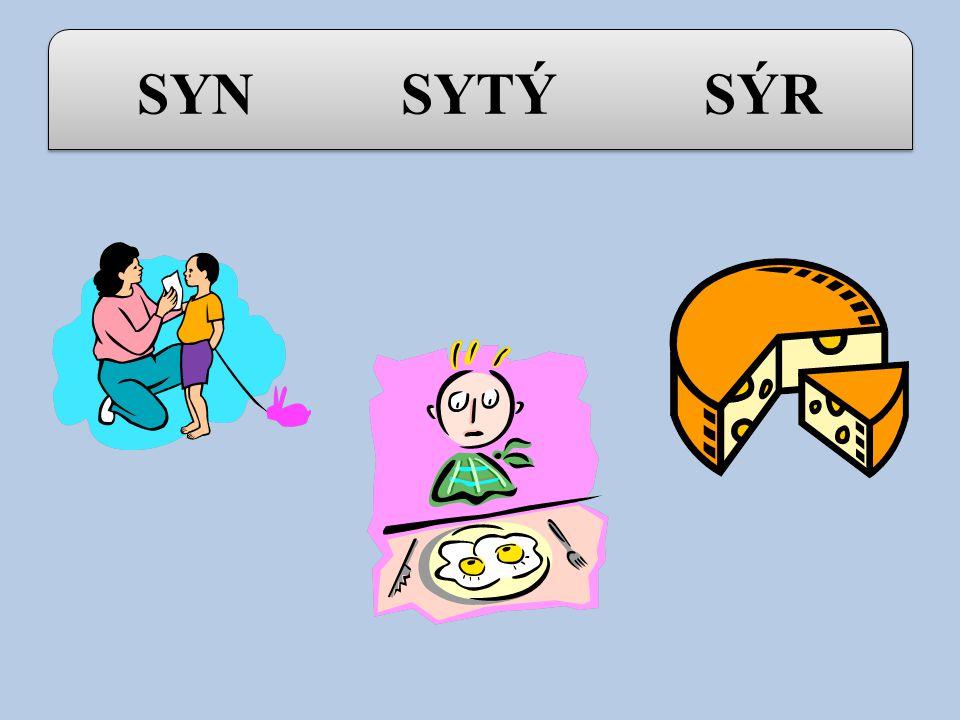 Vyjmenovaná slova po S : SYN - SYTÝ - SÝR SYROVÝ - SYCHRAVÝ - USYCHAT SÝKORA - SYSEL - SÝČEK SYČET - SYPAT SYN - SYTÝ - SÝR SYROVÝ - SYCHRAVÝ - USYCHAT SÝKORA - SYSEL - SÝČEK SYČET - SYPAT