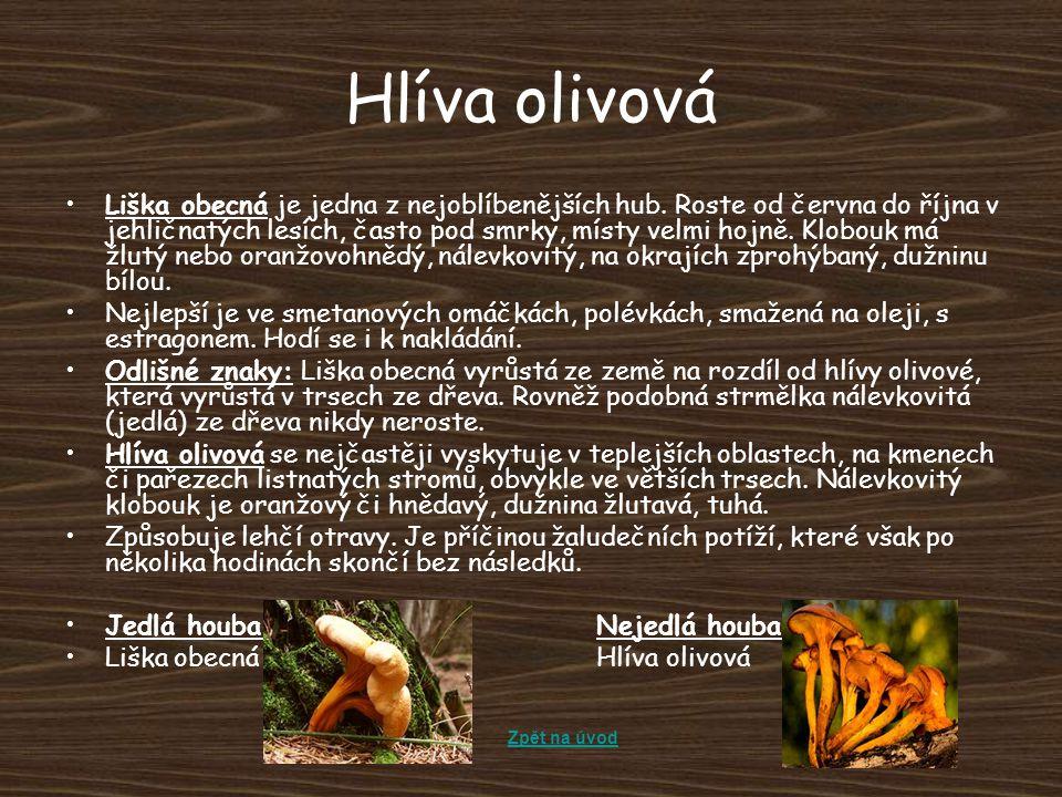 Hlíva olivová Liška obecná je jedna z nejoblíbenějších hub. Roste od června do října v jehličnatých lesích, často pod smrky, místy velmi hojně. Klobou